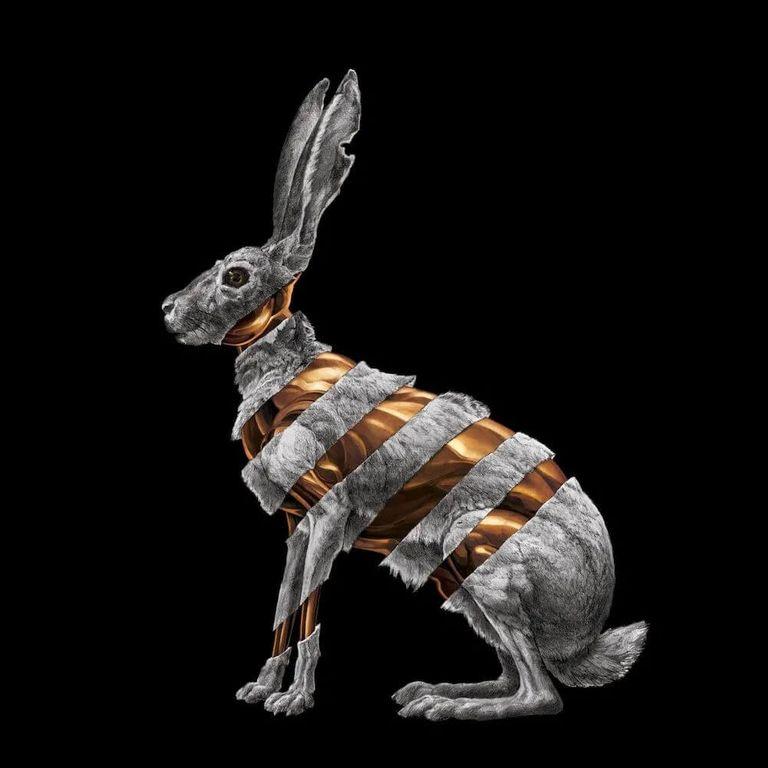 Album artwork of 'Jackrabbit' by San Fermin