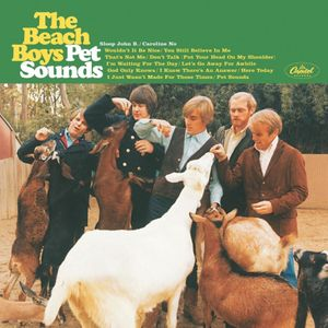 Album cover for The Beach Boys - Pet Sounds