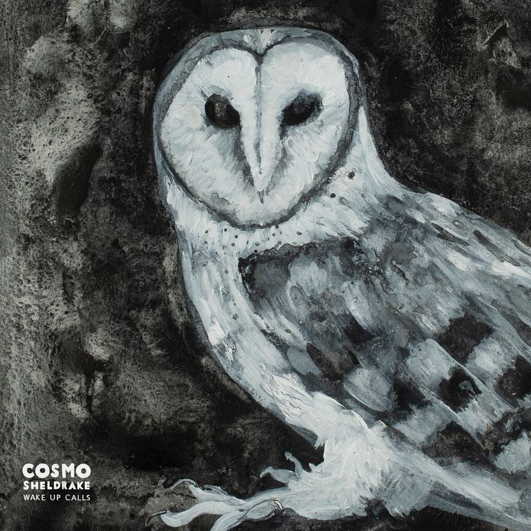 Album artwork of 'Wake Up Calls' by Cosmo Sheldrake